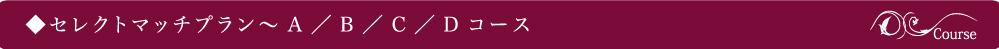 セレクトマッチプラン~A/B/C/Dコース